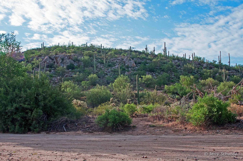 Iron Mine Hill Sonoran Desert - Southern Arizona near Tucson 1