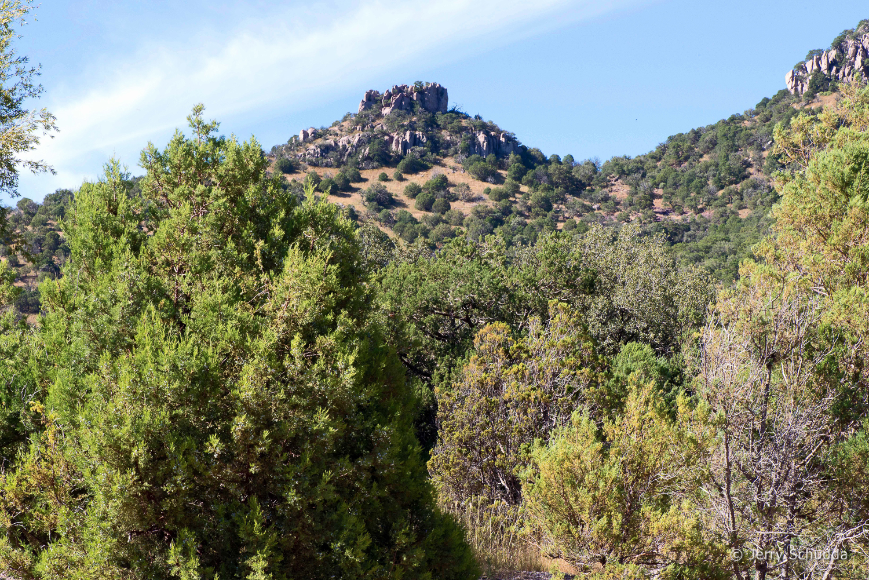 Chiricahua Mountains -  Southeastern Arizona