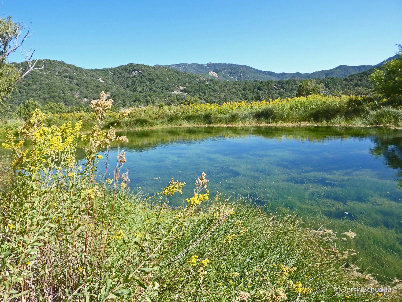 Pond in Huachuca Mountains - Southeast Arizona 3